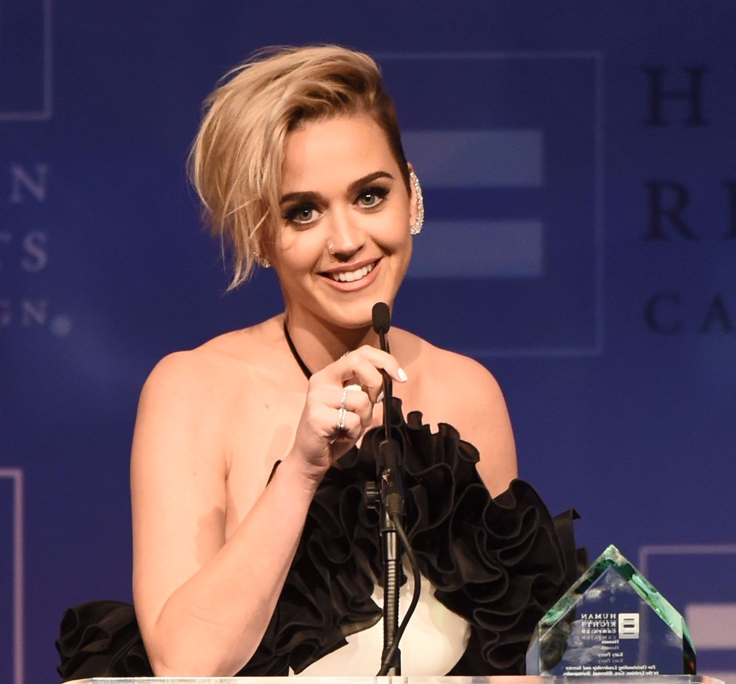 Katy Perry | Human Rights Campaign | Los Angeles Gala