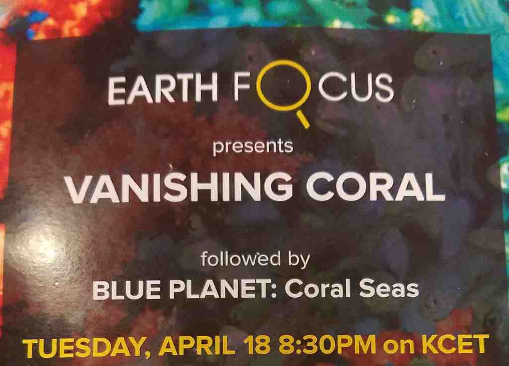 KCETLink Debuts All-New EARTH FOCUS Special 'Vanishing Coral' and BLUE PLANET 'Coral Seas' April 18th